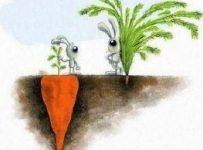 Что такое успех - что такое настоящий и реальный успех в жизни