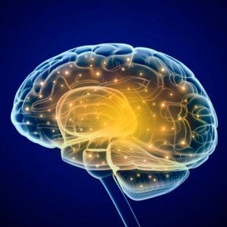 Развитие вашего мозга: рекомендации и упражнения