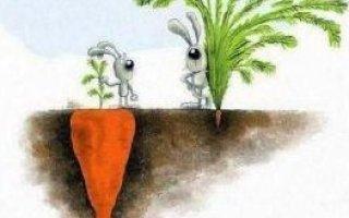 Что такое настоящий и реальный успех в жизни?
