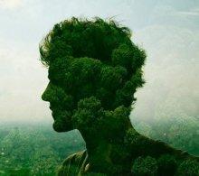 Качества, характеризующие личность человека