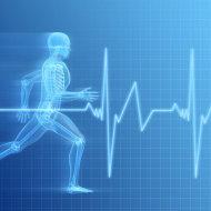Каким должен быть здоровый человек? Признаки здорового человека